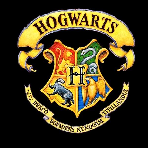 Camiseta Harry Potter Hogwarts